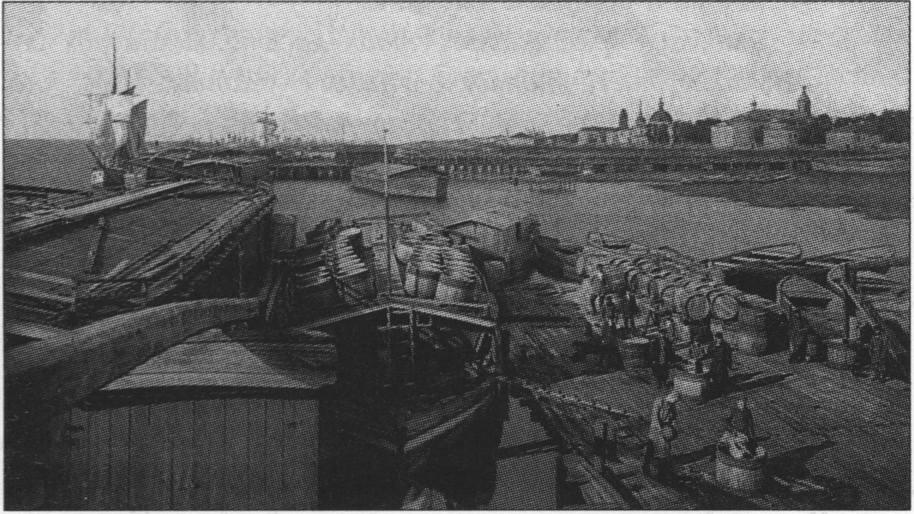 Поморская торговля в Архангельске, 1896 г