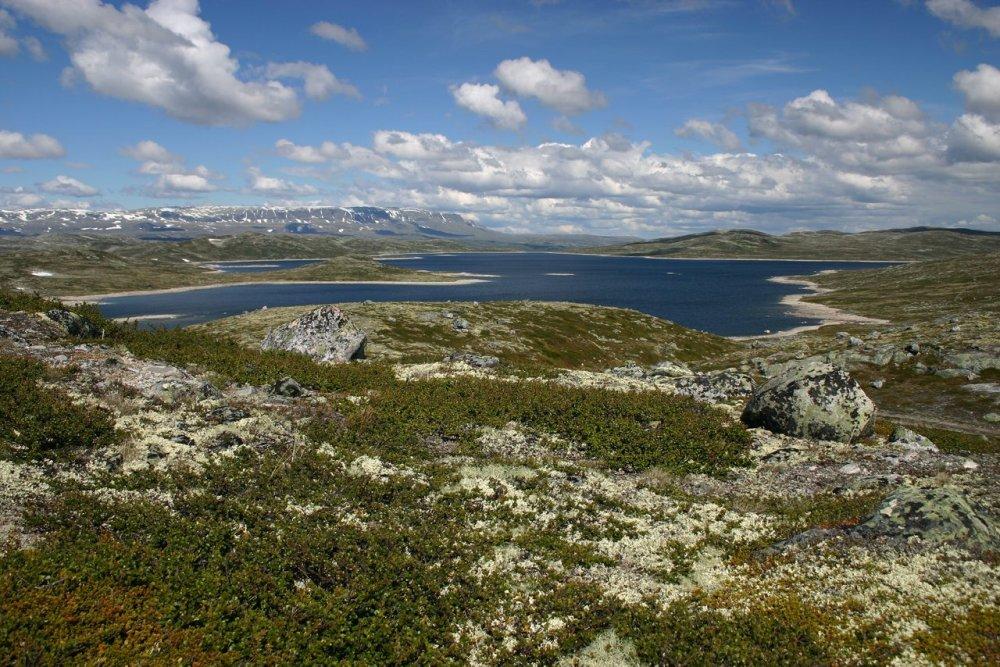 Крупнейшее высокогорное плато Европы Хардангервидда